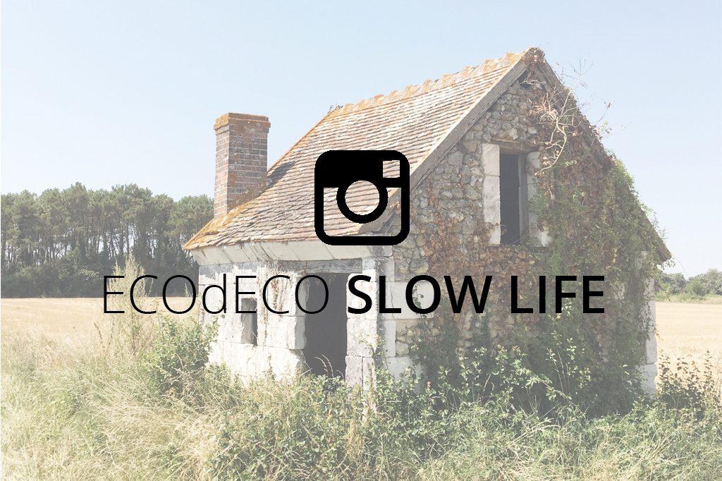 instagram ecodeco